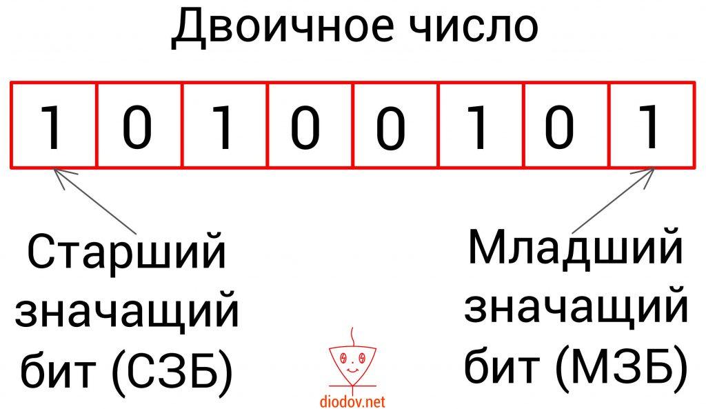 Двоичное число